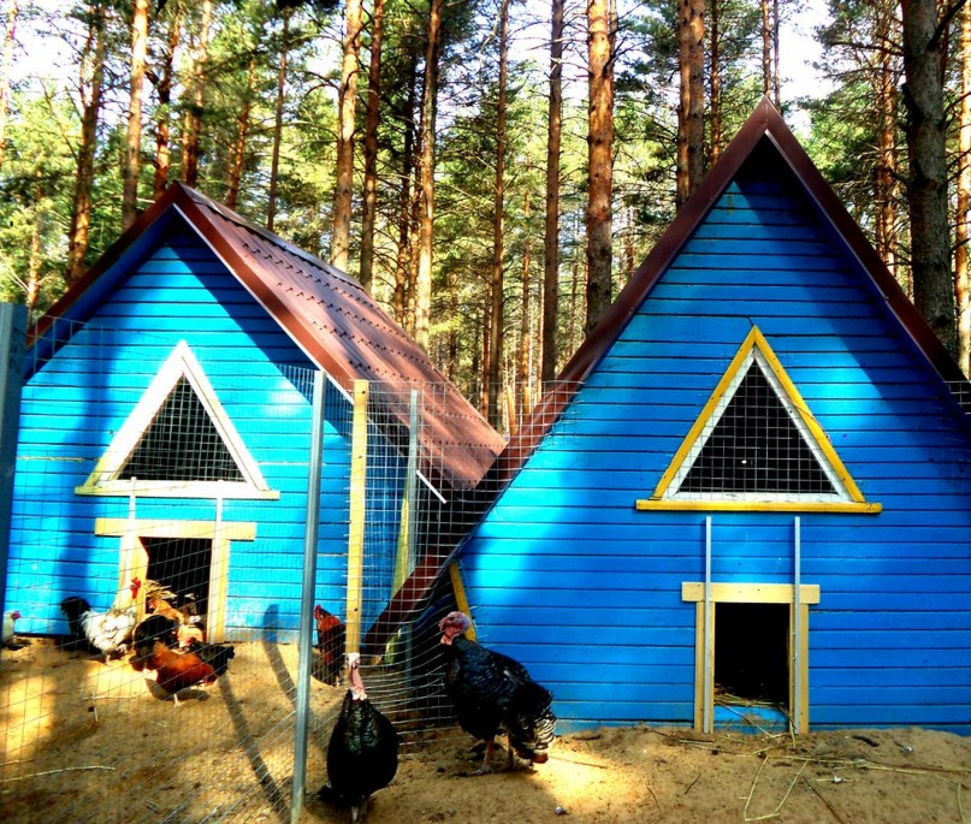 База отдыха «Стёпаново» Вологодская область, фото 7