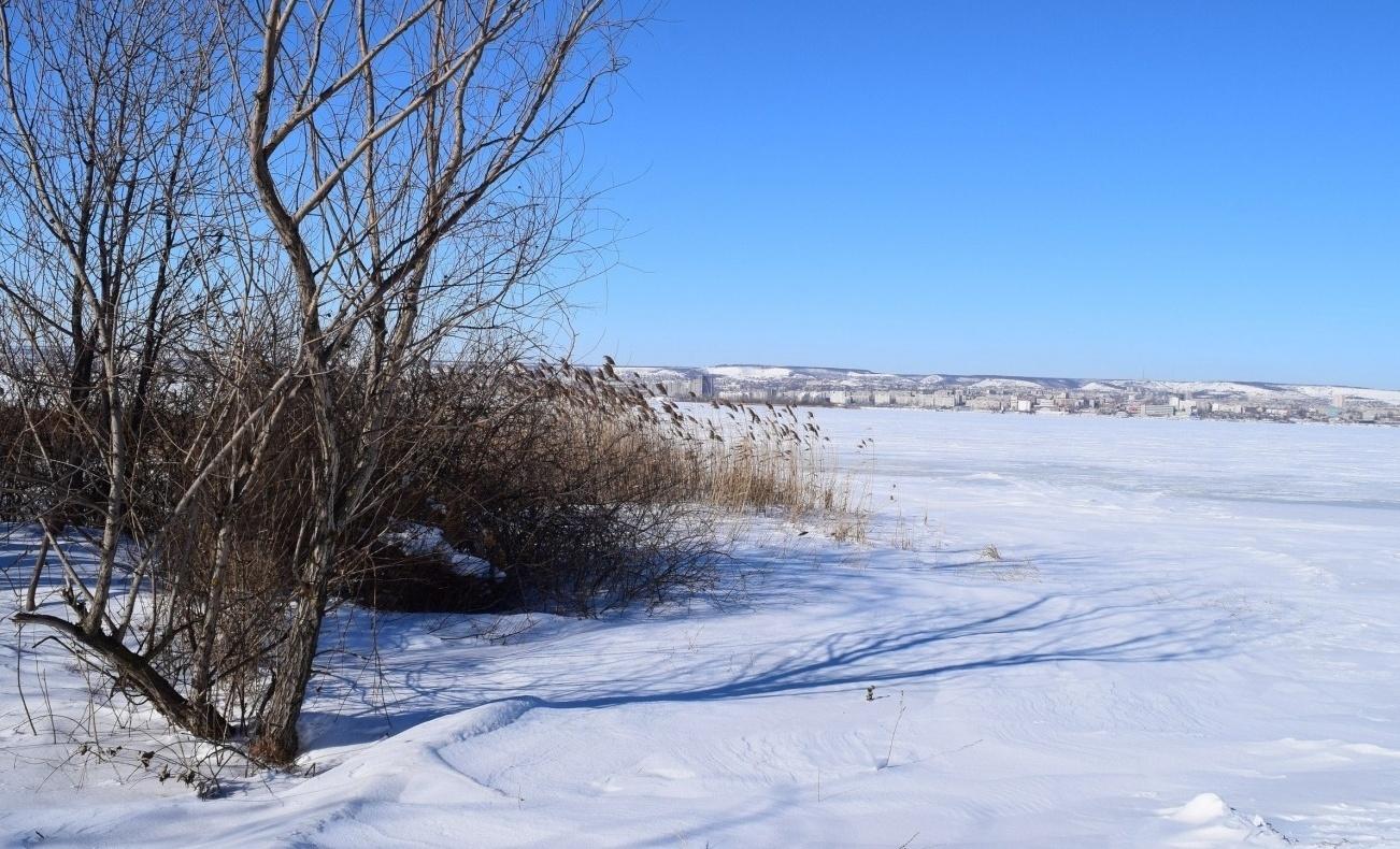 Турбаза «Иволга» Саратовская область, фото 32