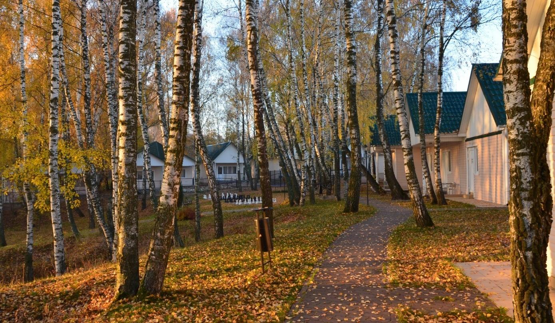 База отдыха «Усадьба Отрада» Калужская область, фото 16