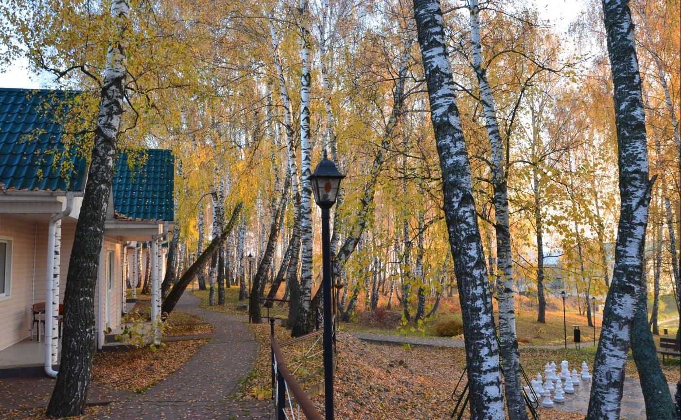 База отдыха «Усадьба Отрада» Калужская область, фото 18