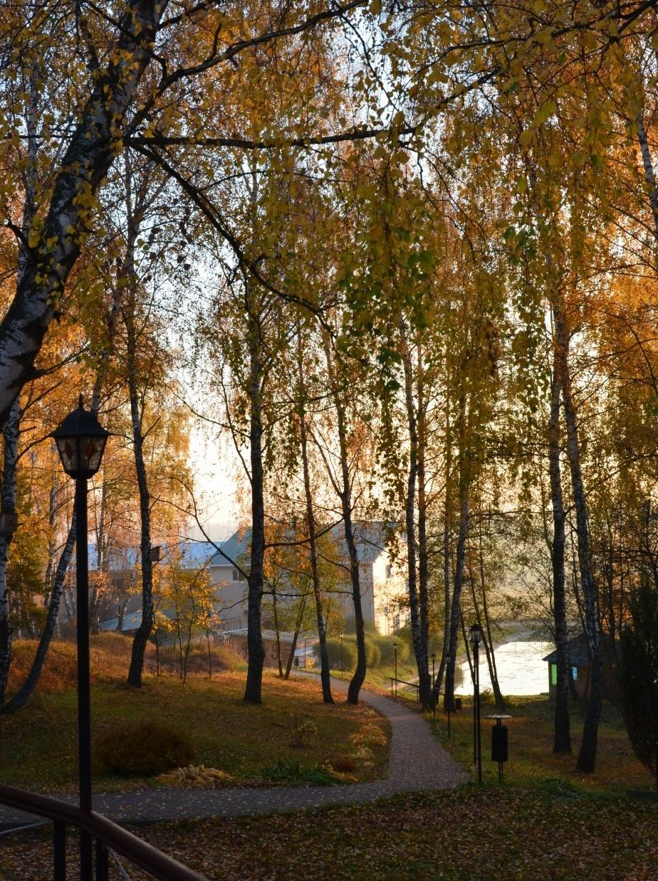 База отдыха «Усадьба Отрада» Калужская область, фото 19