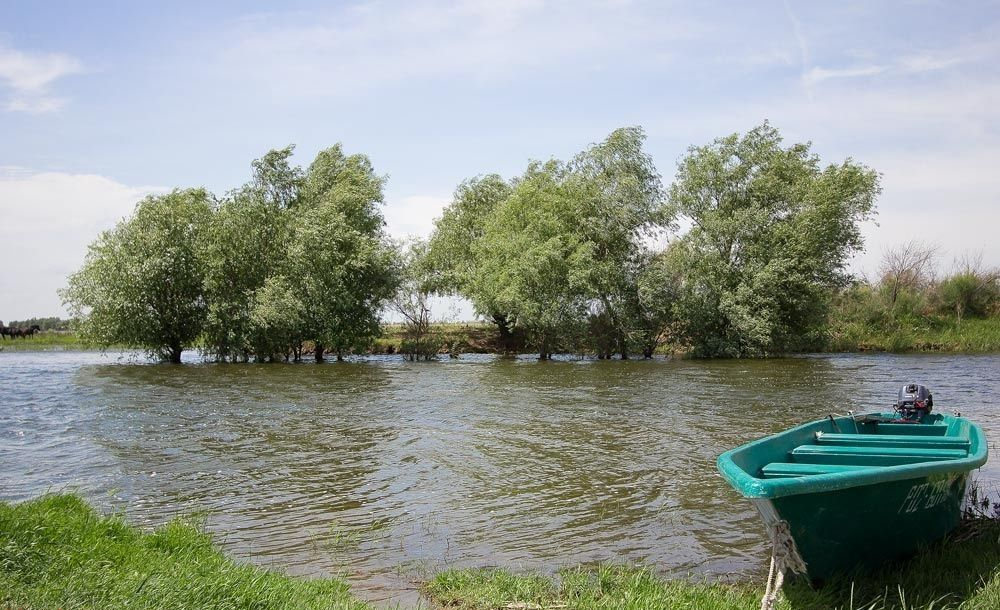 База отдыха «Старая Волга» Астраханская область, фото 6