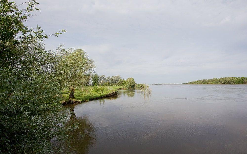 База отдыха «Старая Волга» Астраханская область, фото 7