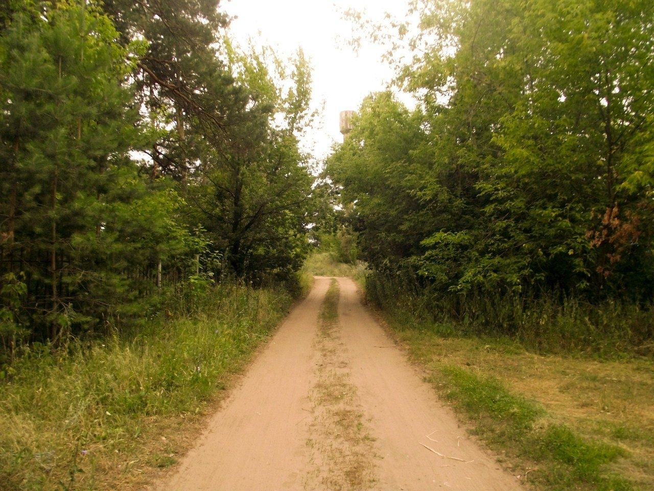 Турбаза «Голубые огни» Ульяновская область, фото 11
