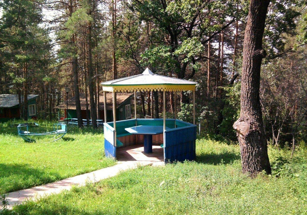 Турбаза «Голубые огни» Ульяновская область, фото 10