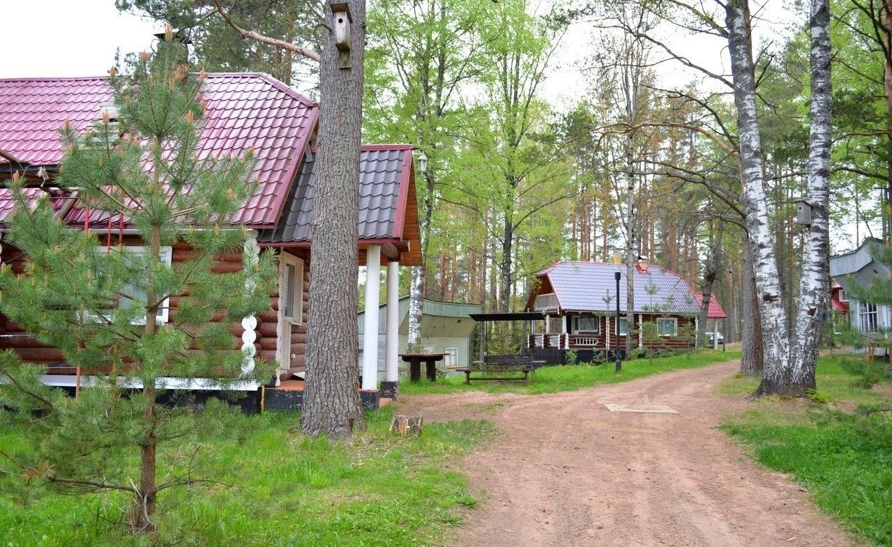 Охотничье-рыболовная база «Аленушка» Новгородская область, фото 6