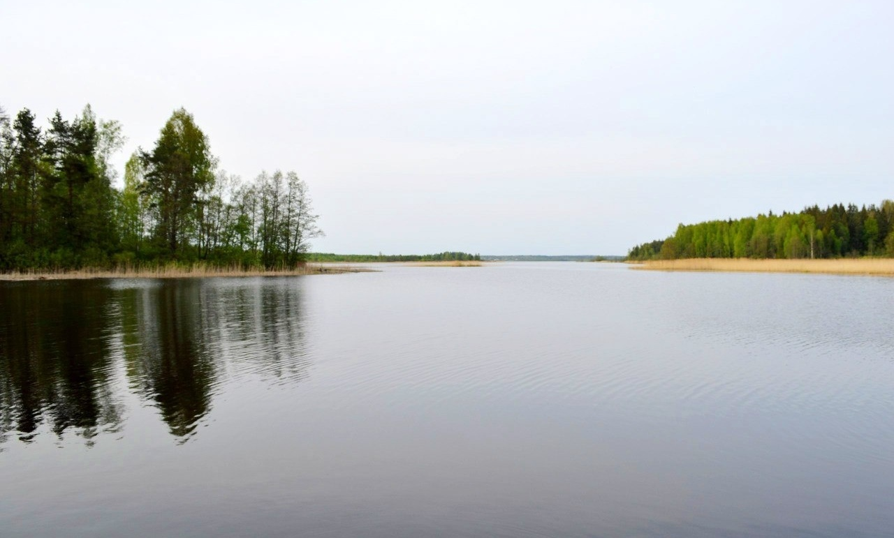 Охотничье-рыболовная база «Аленушка» Новгородская область, фото 20