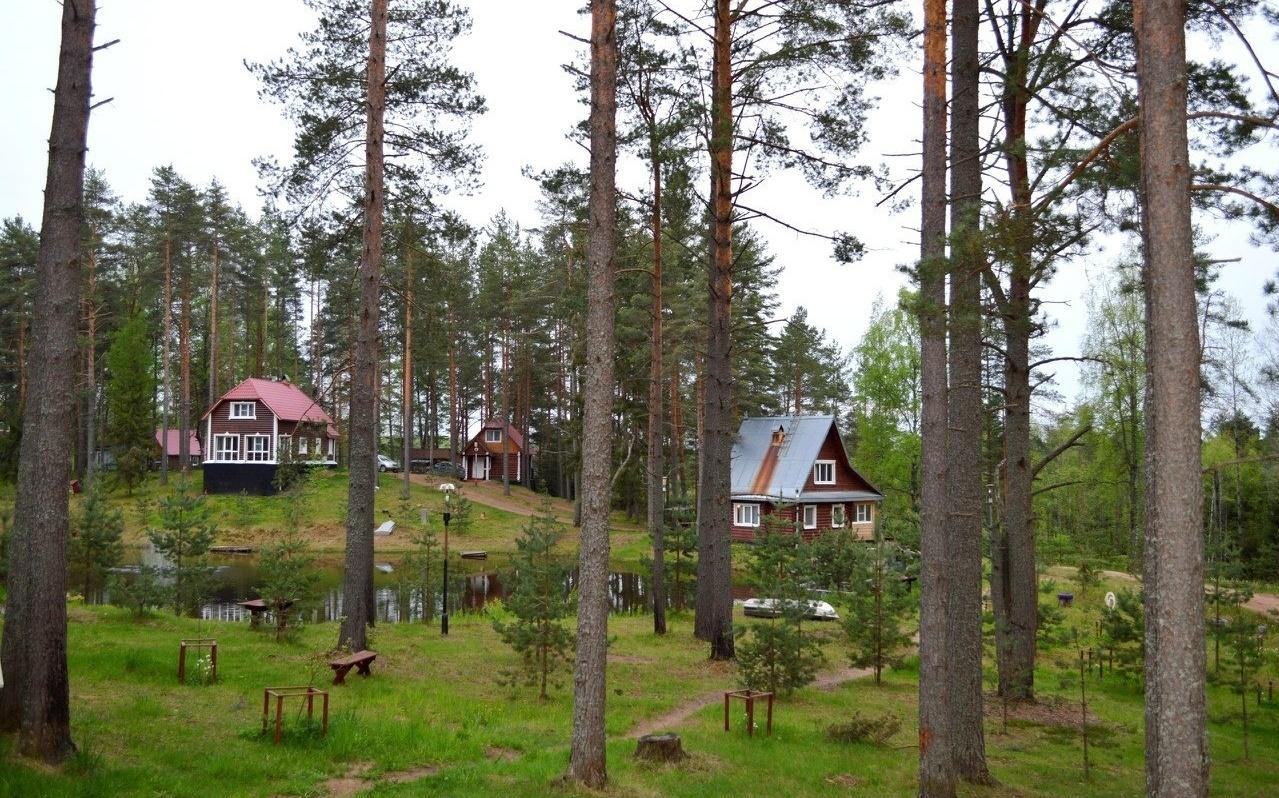 Охотничье-рыболовная база «Аленушка» Новгородская область, фото 13