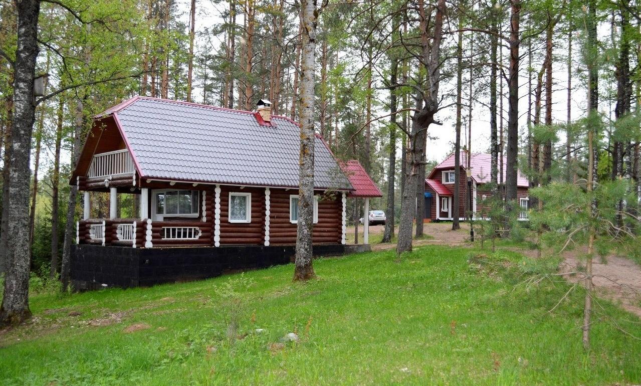 Охотничье-рыболовная база «Аленушка» Новгородская область, фото 7