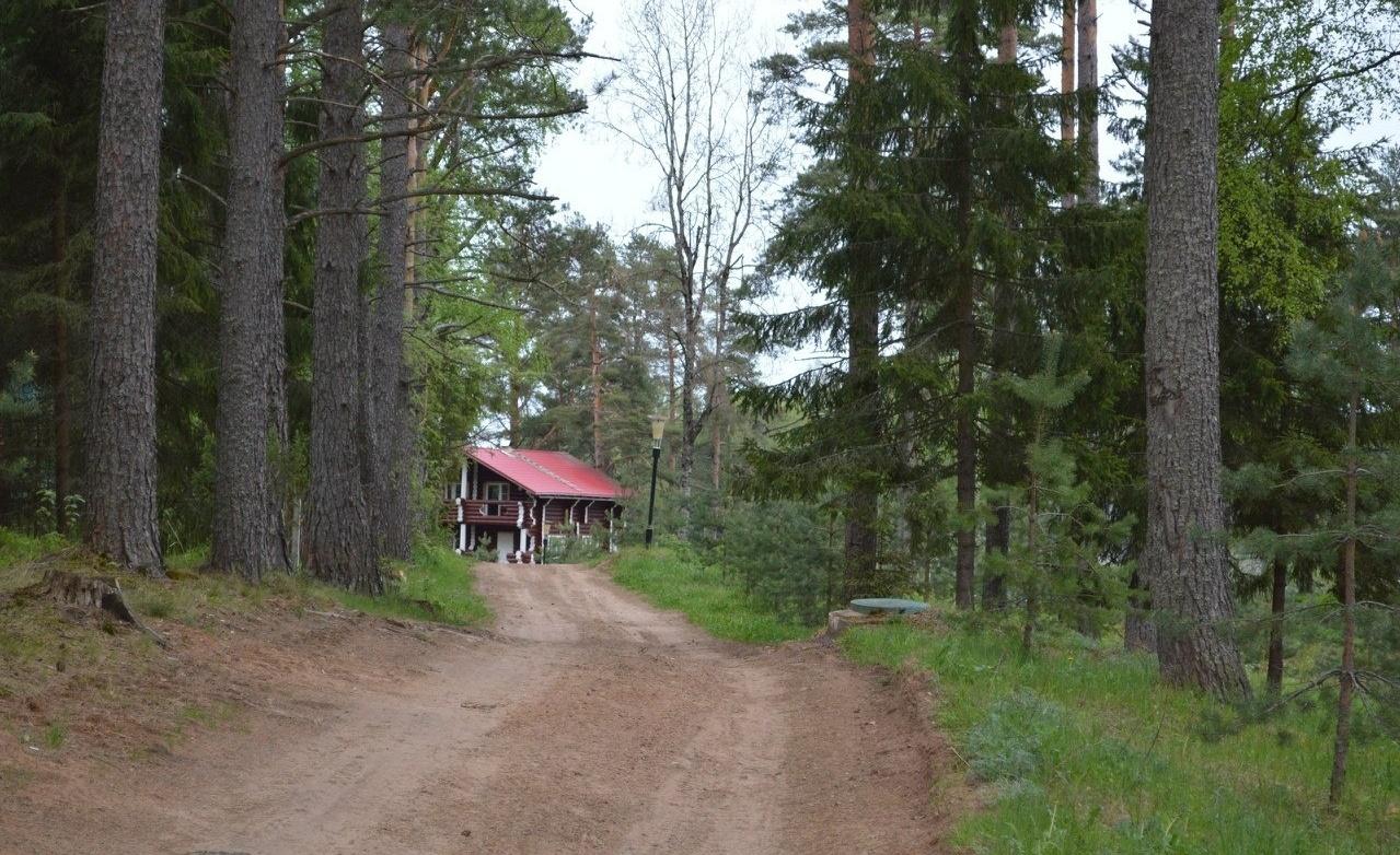 Охотничье-рыболовная база «Аленушка» Новгородская область, фото 11