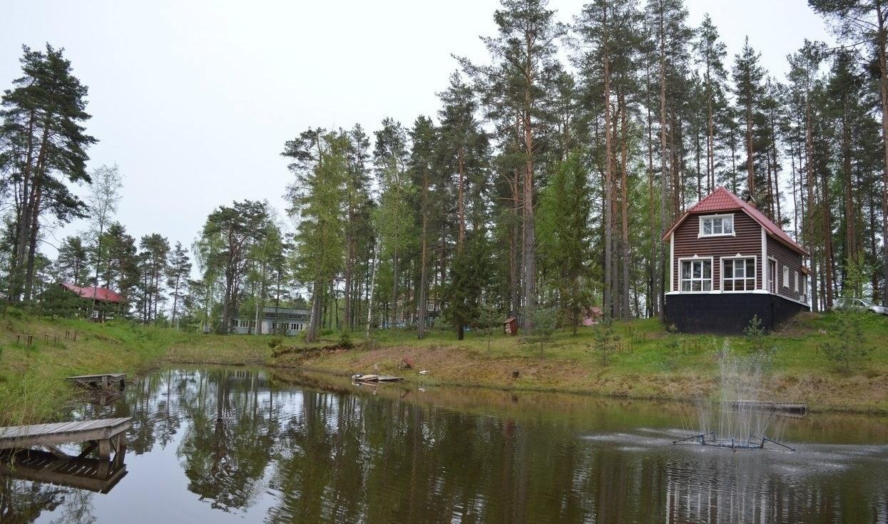 Охотничье-рыболовная база «Аленушка» Новгородская область, фото 12