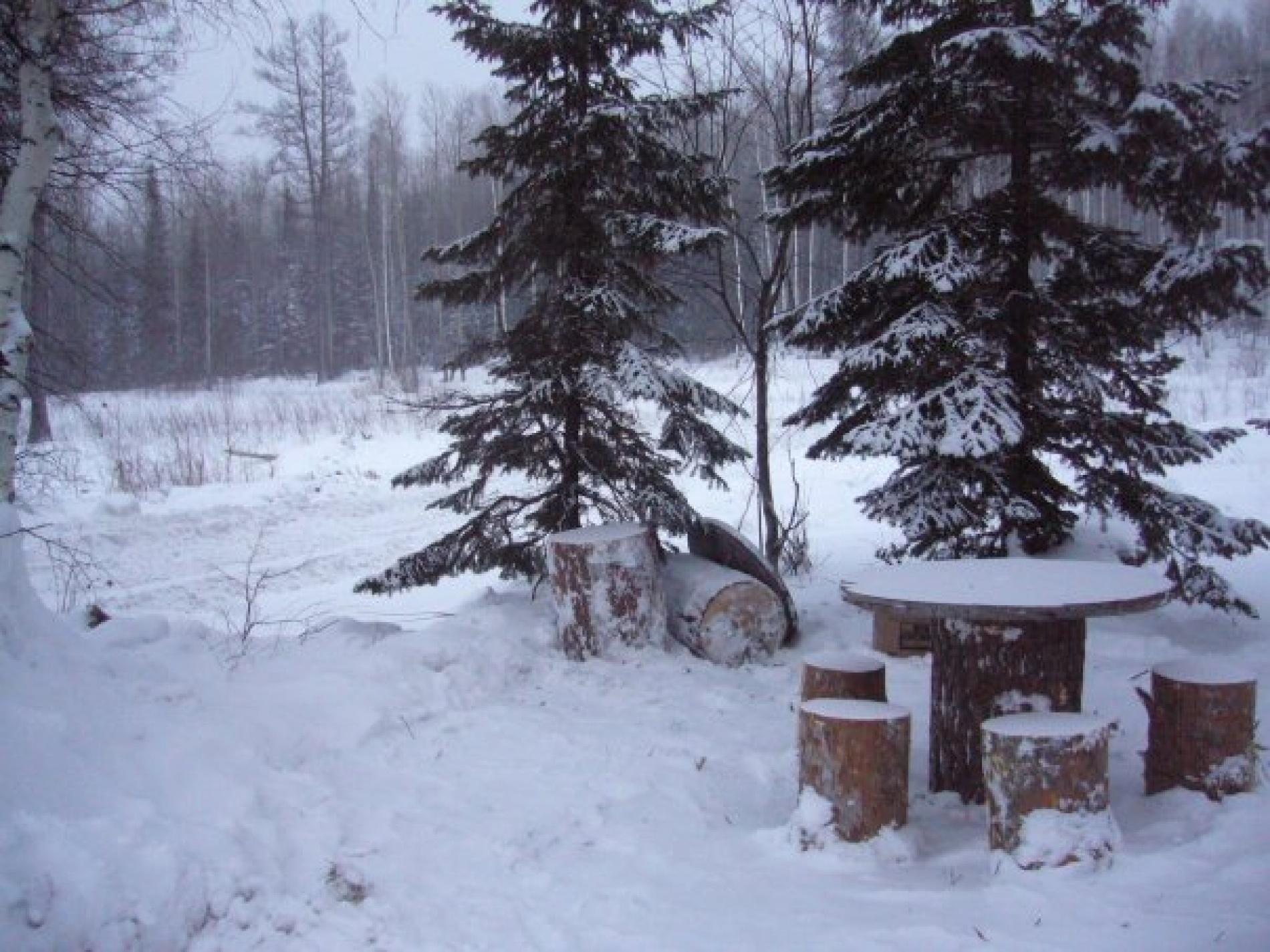 """База отдыха """"Пихтовый гребень"""" Новосибирская область, фото 6"""