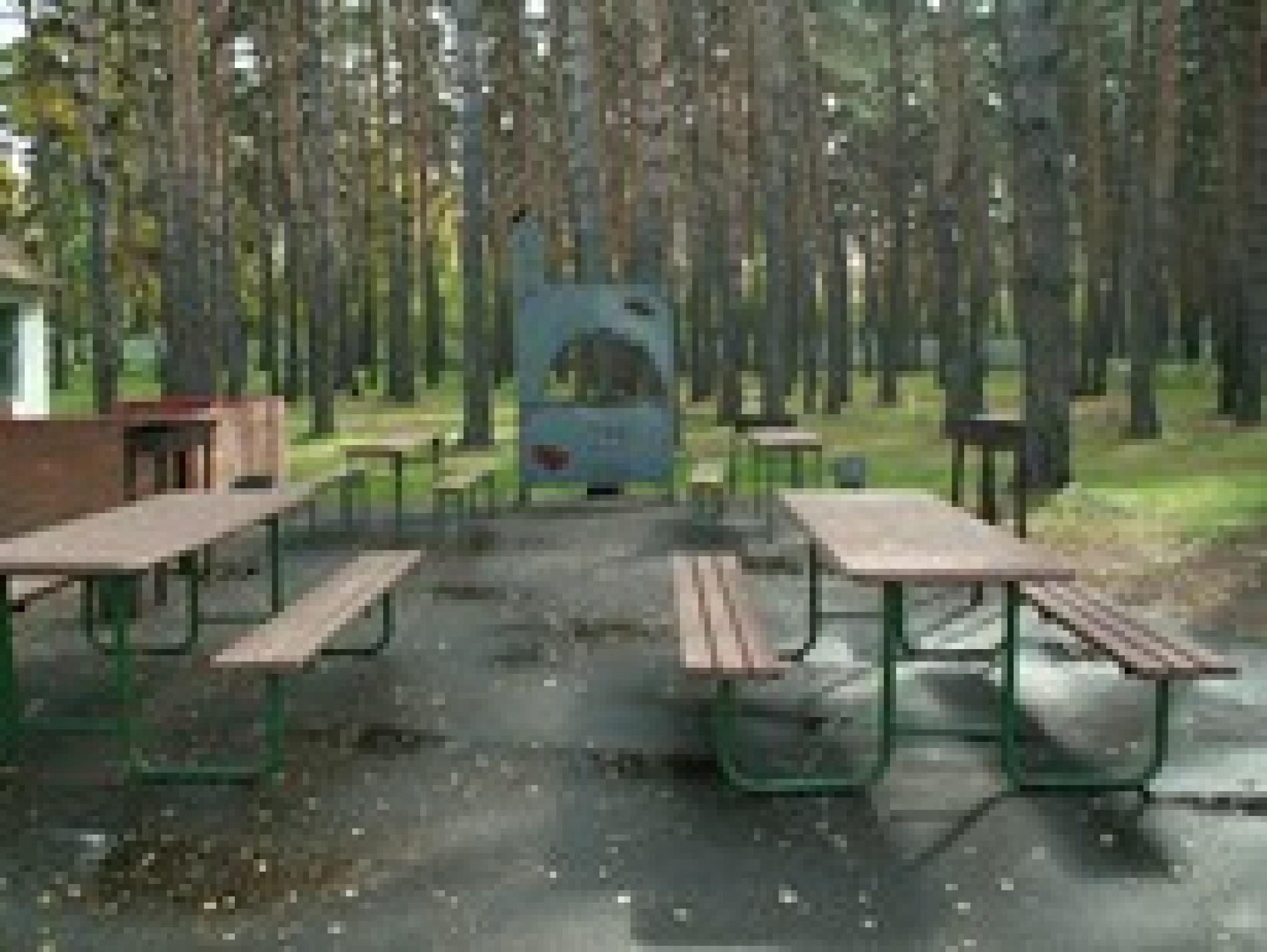 База отдыха им. Стрельникова Омская область, фото 10