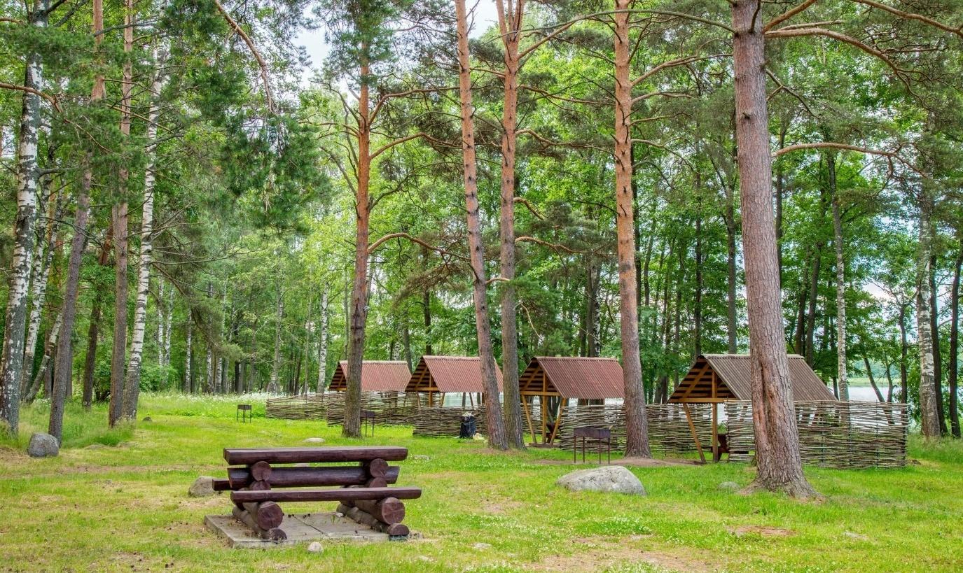 База отдыха «Лосево Парк» Ленинградская область, фото 7