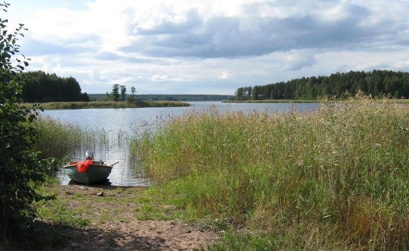 База отдыха «Холодный ручей» Ленинградская область, фото 17