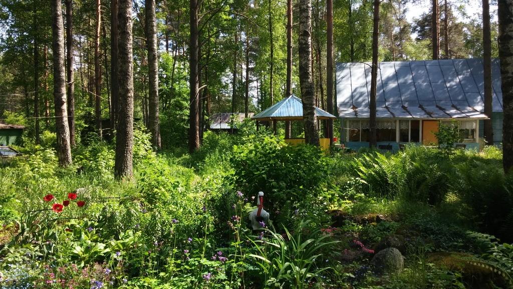 База отдыха «Холодный ручей» Ленинградская область, фото 14