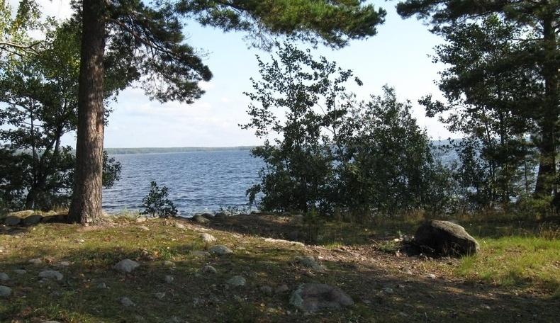 База отдыха «Холодный ручей» Ленинградская область, фото 21