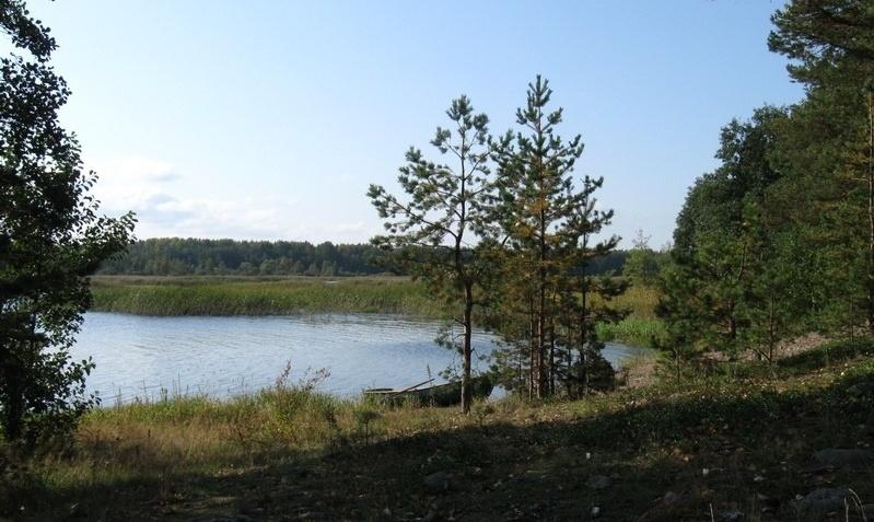 База отдыха «Холодный ручей» Ленинградская область, фото 22