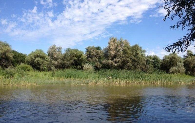 Рыболовно-охотничья база «Новинская» Астраханская область, фото 6