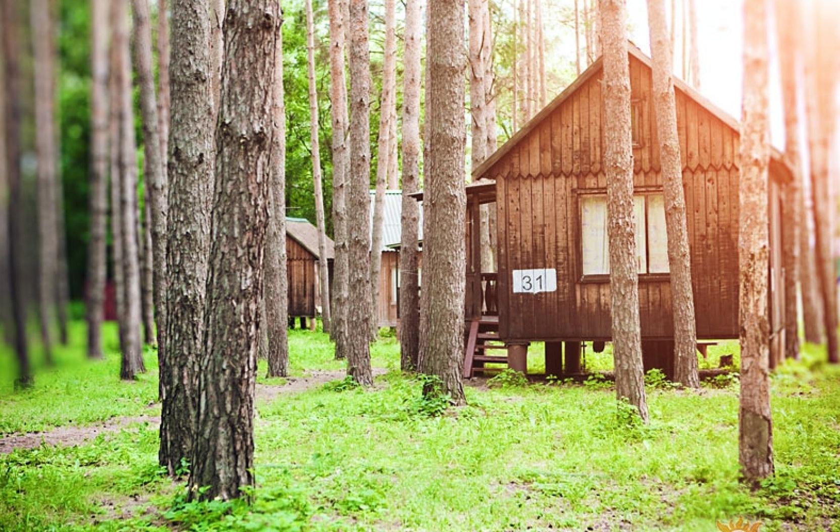 """База отдыха """"Тихие зори"""" Самарская область, фото 4"""
