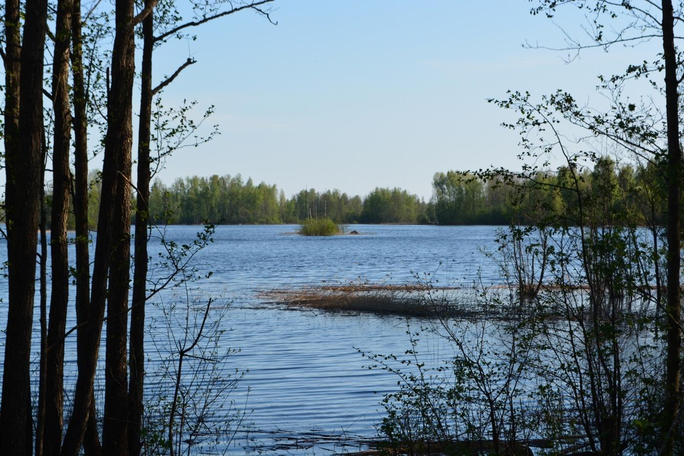 База отдыха «Вуокса-Хутор» Ленинградская область, фото 14