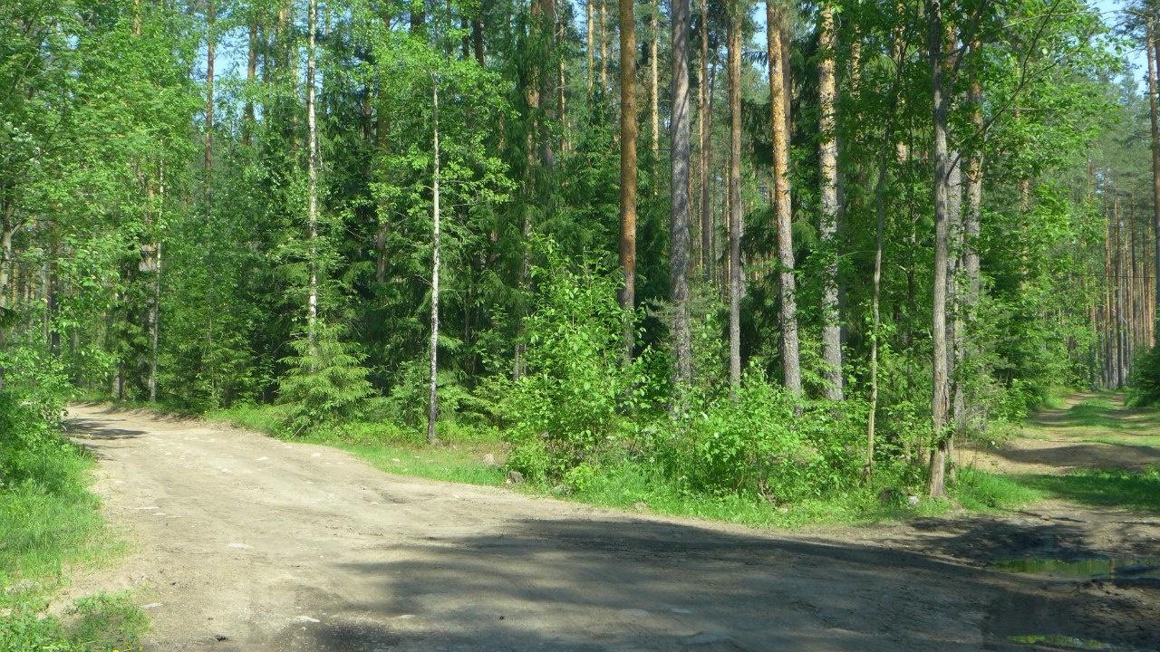 База отдыха «Вуокса-Хутор» Ленинградская область, фото 8