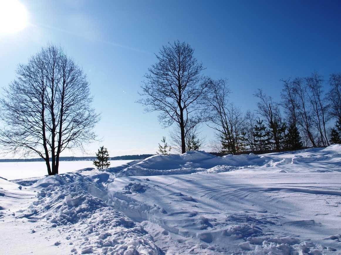База отдыха «Константинова Усадьба» Новгородская область, фото 12