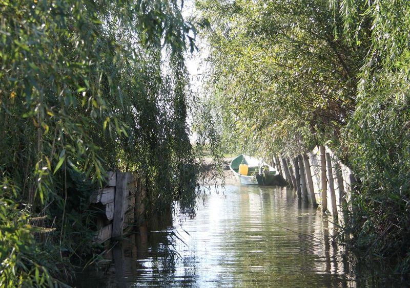 База отдыха «Тихая» Астраханская область, фото 5