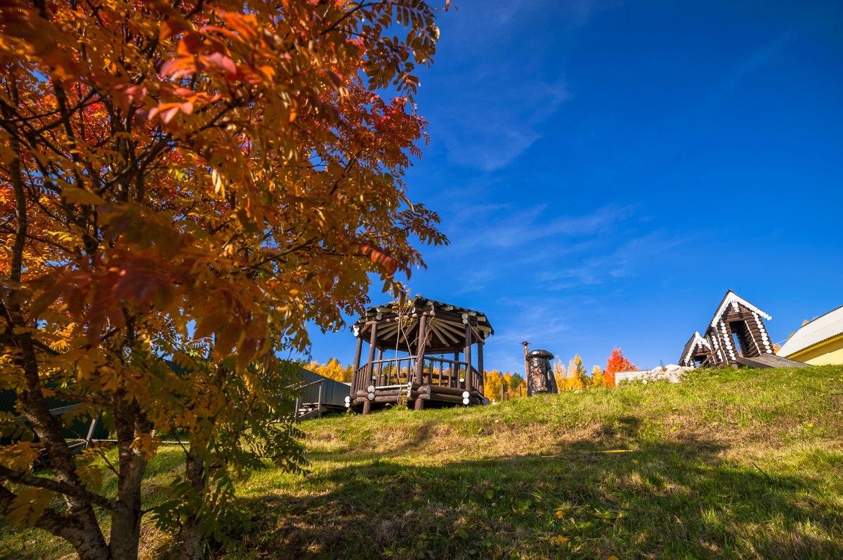 Лесной отель «Голубино» Архангельская область, фото 6