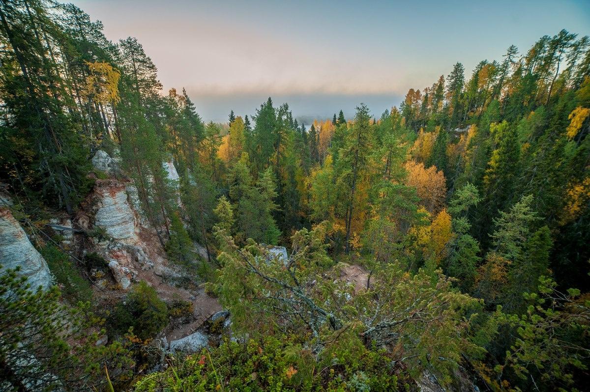 Лесной отель «Голубино» Архангельская область, фото 18