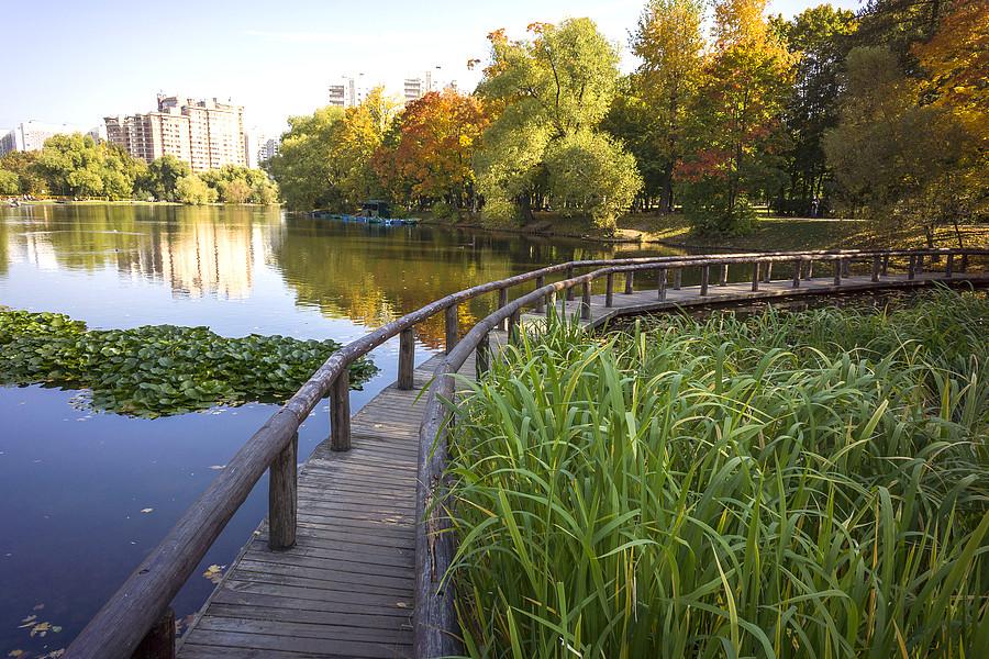 Фотографии воронцовского парка в москве